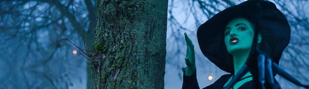 Der Zauberer von Oz - gespielt im Kinder-und Jugendtheater Frankfurt